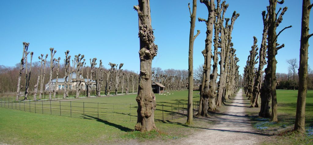 zonnepanelen plaatsen Overveen