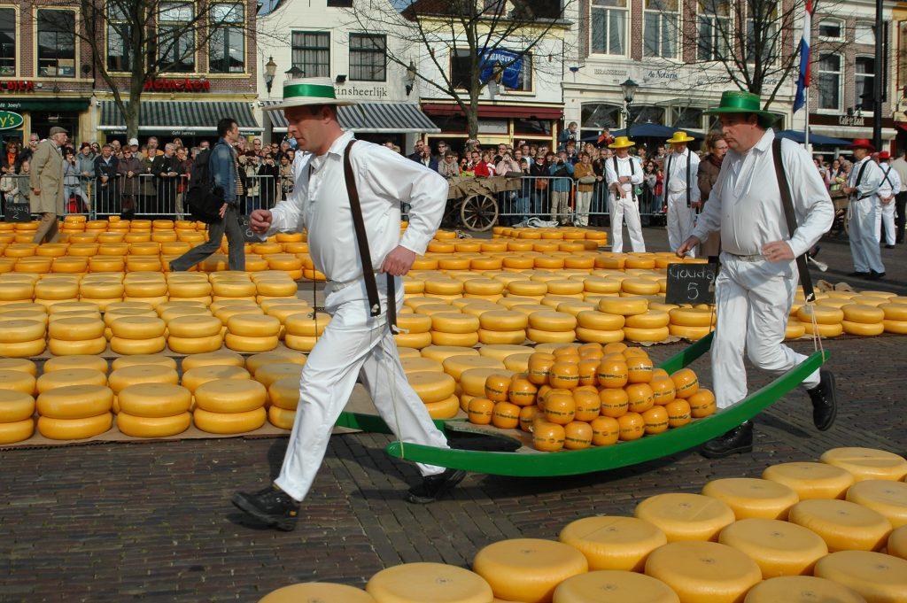 Zonnepanelen plaatsen Alkmaar